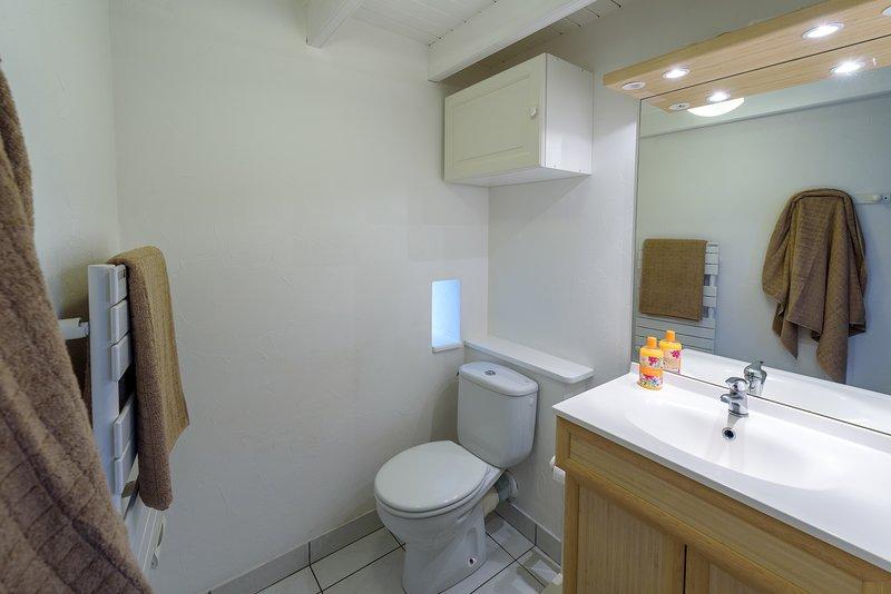 Badkamer met douche en wc Penty 1