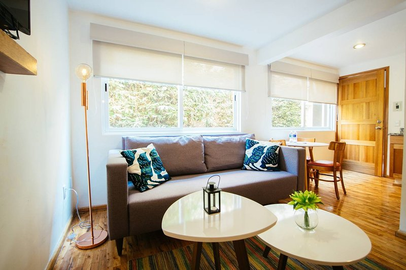 Unmatchable comfort, great location W/BKFST (G9), vacation rental in Mexico City