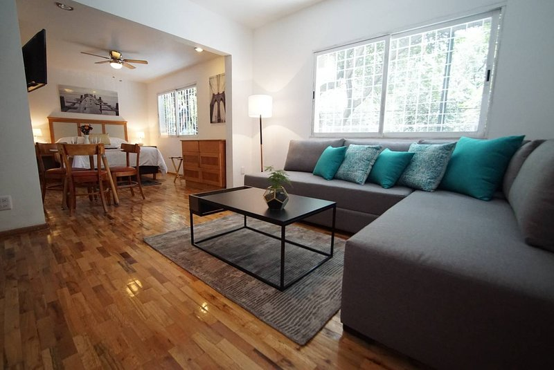 Condesa's Plush with breakfast included (G8), vacation rental in Mexico City