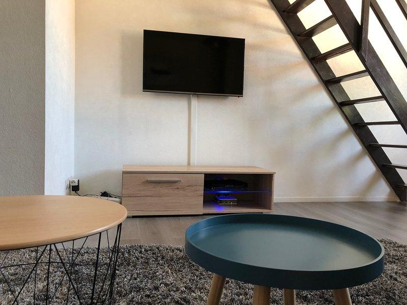 Appartement Cosy centre Ville, location de vacances à Chigny les Roses