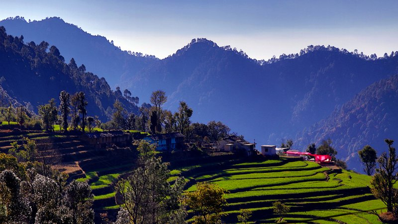 Yoga and Detox retreat in remote Himalayas., holiday rental in Pauri
