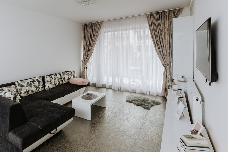 Traian - Deluxe Apartment, holiday rental in Capusu Mic