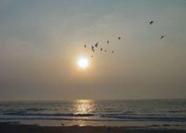 sun set views