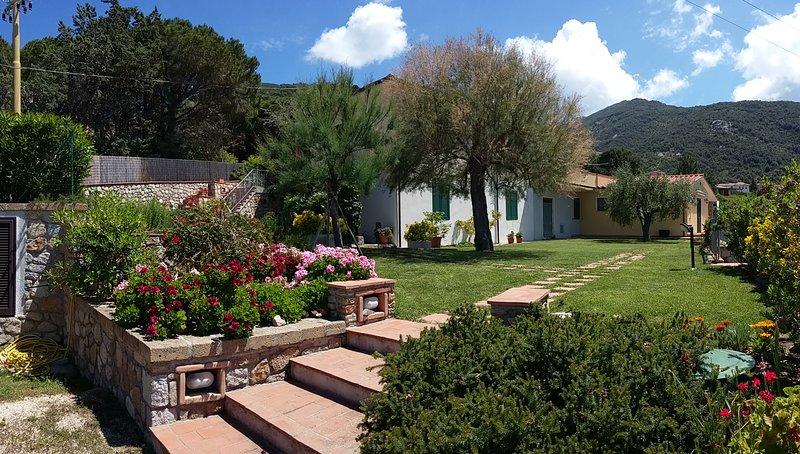 Casa Olivo - Punta Polveraia Holiday House