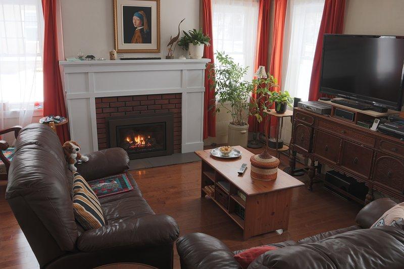 Puedes leer junto al fuego en nuestra sala de estar. Puedes leer acogedor cerca del fuego
