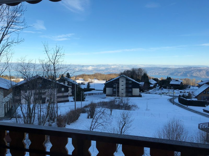 Nice apt with mountain view, holiday rental in Saint-Gingolph
