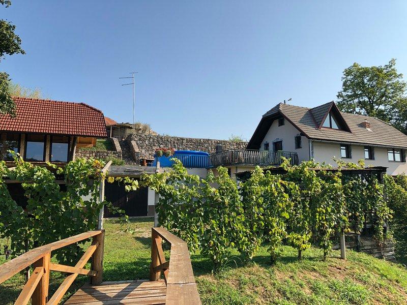Apartment Viktorija, holiday rental in Straza