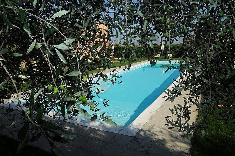 Casa Flora I, holiday rental in Vaiano