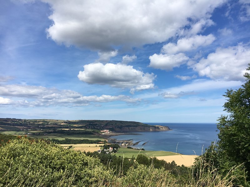 View from the road between Pine Cottage and Ravenscar