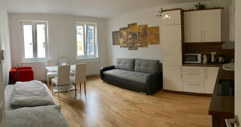 Entire apartment near U1 Keplerplatz that allows 9 people to stay per time.