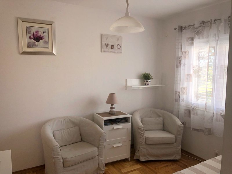 Apartments Viola Mandre - 50m from the beach, vacation rental in Mandre