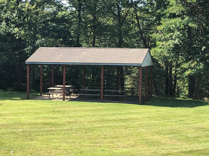 Picnic area in yard behind house