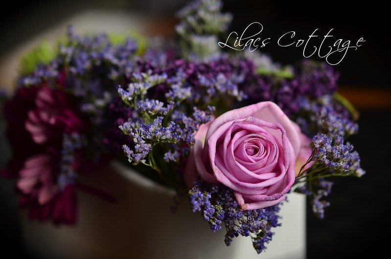 Lilas de flores frescas