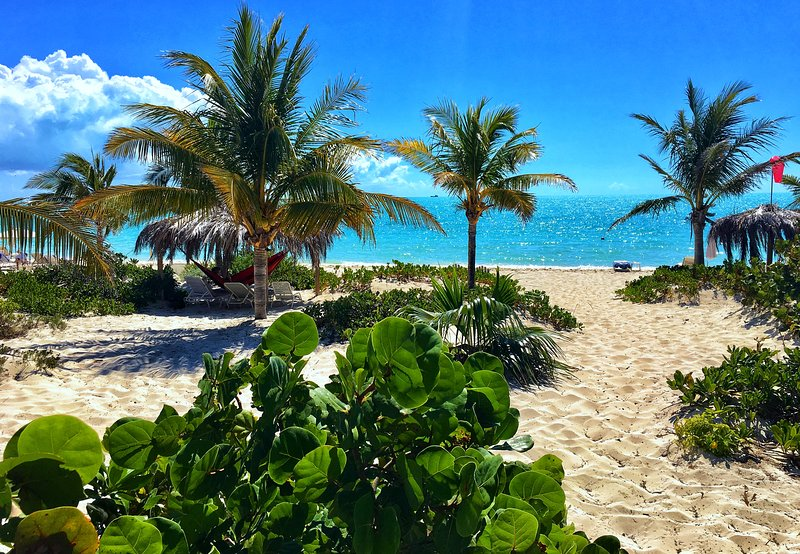 Wyakha 1 BR On Beach - Garden View - Pool - Peaceful - SUPs & Kayaks (Unit #1), holiday rental in Providenciales