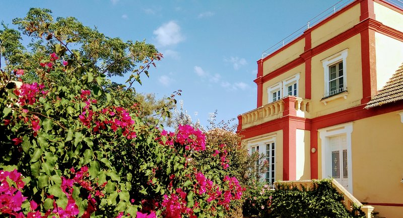 Villaluz, holiday rental in Sanlucar de Barrameda