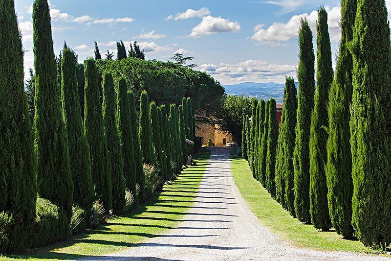 Podere Appiano GINESTRA, Ferienwohnung in Barberino Val d'Elsa