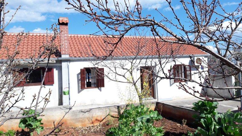 Two bedroom apartment Savar, Dugi otok (A-12762-a), holiday rental in Savar