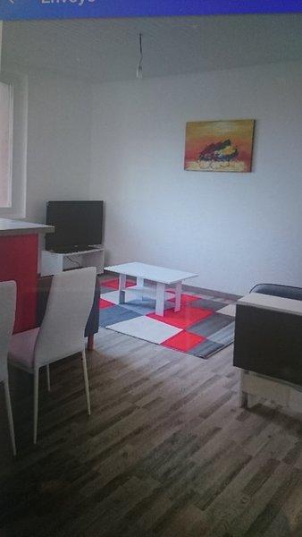 Appartement meublé Agen centre, holiday rental in Madaillan