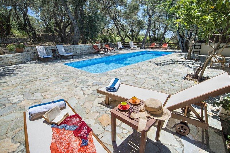 Lillian Villa - Sleek design meets tradition in a harmonious scenery, holiday rental in Antipaxos