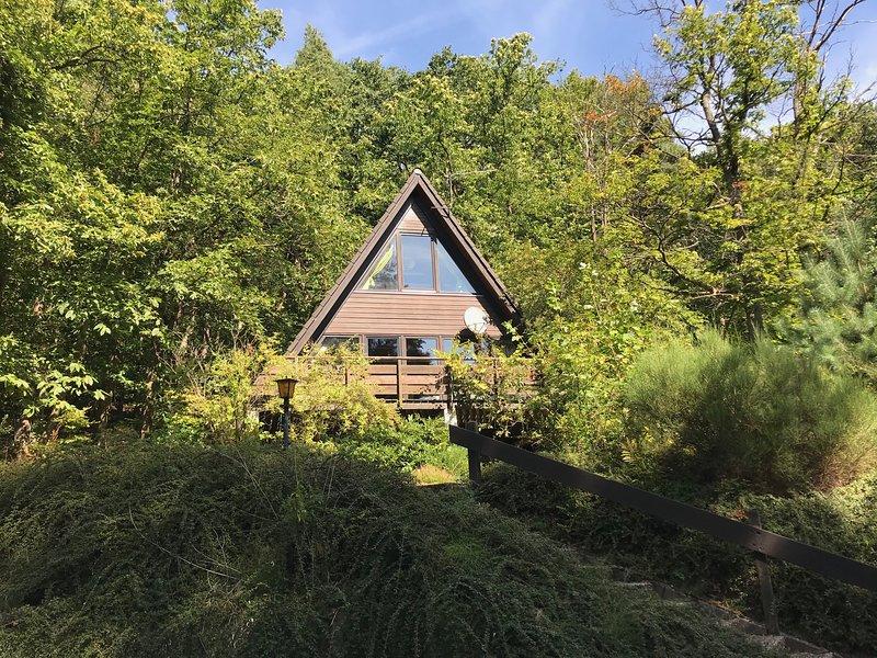 Palatine witches' cottage (summer)