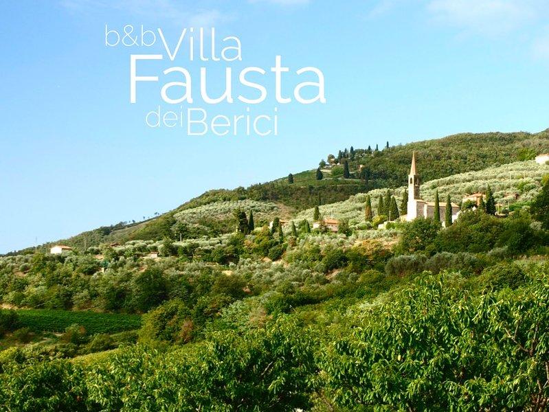 B&B Villa Fausta dei Berici, vacation rental in Villaga