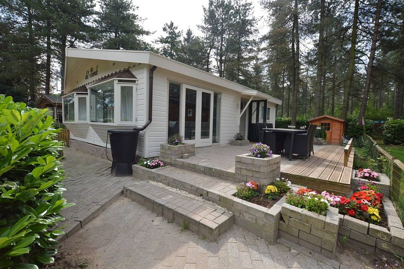 Beautiful forest chalet for nature lovers, holiday rental in Haghorst