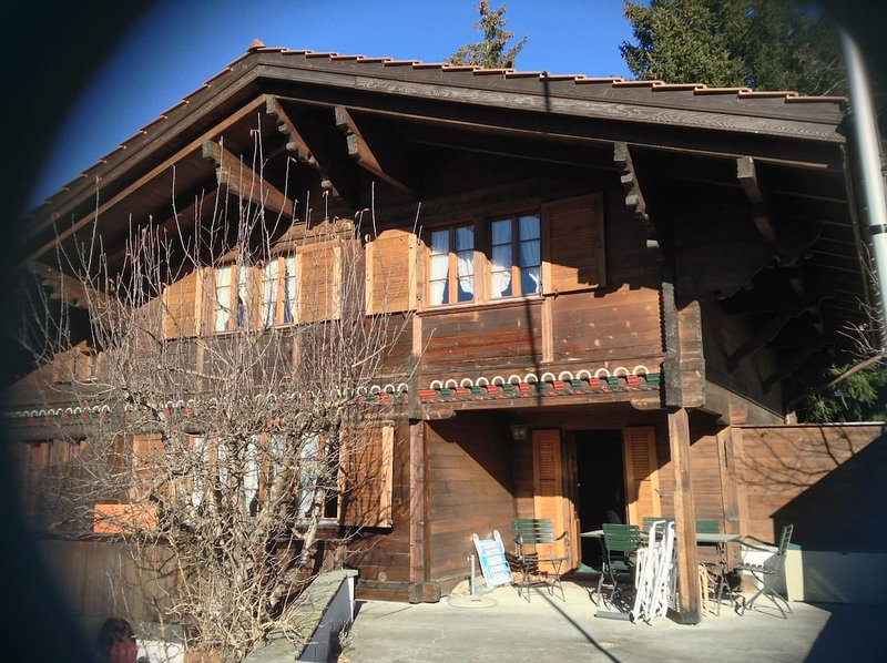 Ski-In Ski-Out, Cozy Swiss Typical Apartment, vacation rental in Schonried
