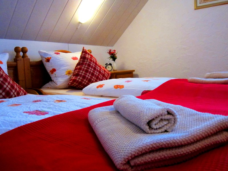 Landgasthof Sonne, Hotel&Restaurant, holiday rental in Rhinau