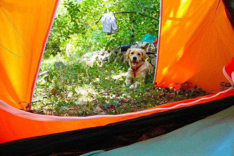 Agape Farm Camp: (Double Tent 12), location de vacances à Bigova