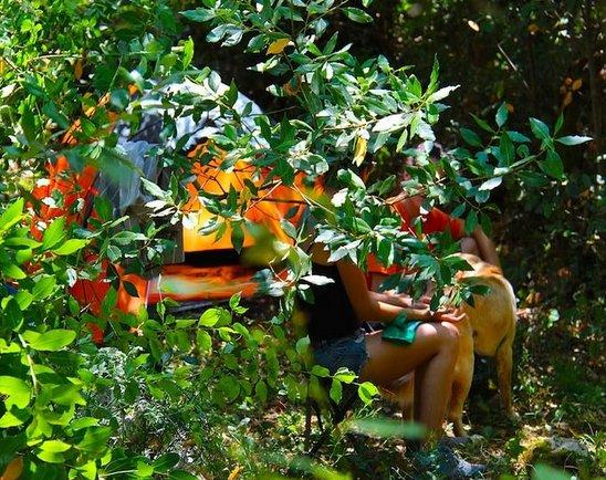 Agape Farm Camp: (Single Tent 17), holiday rental in Radanovici