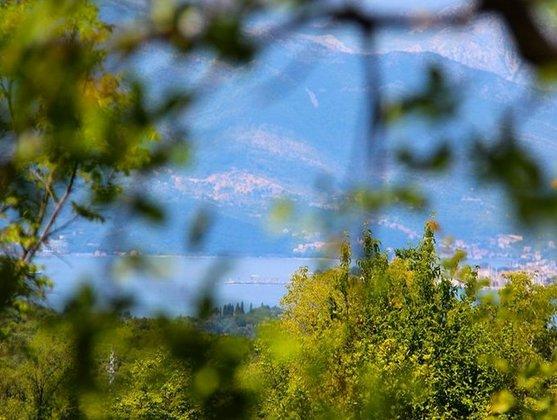Agape Farm Camp: (Single Tent 24), holiday rental in Radanovici
