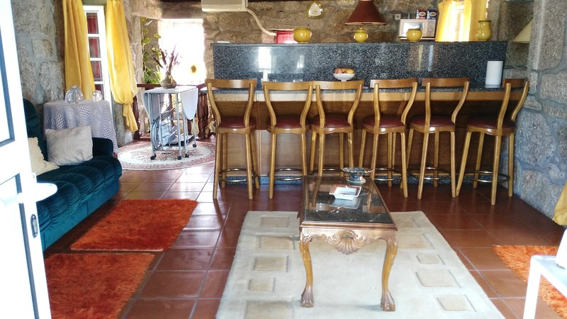 Nice house with terrace, holiday rental in Santo Tirso