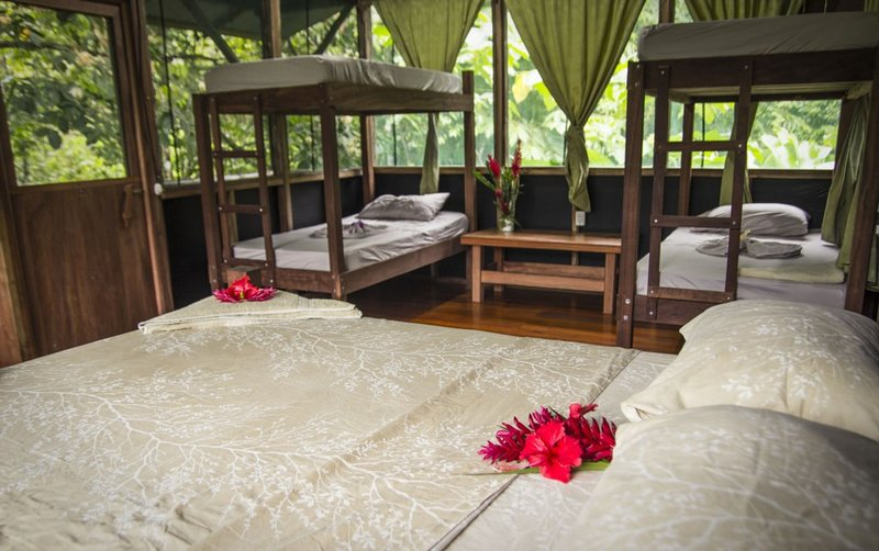 Naguala Room2, vacation rental in Corcovado National Park