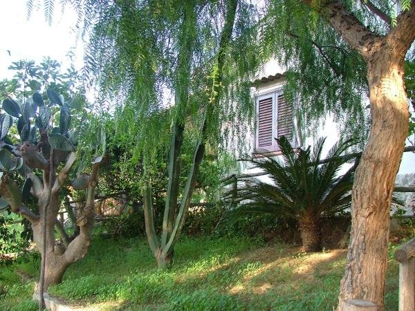 Villa Costa Grande, holiday rental in Bolognetta