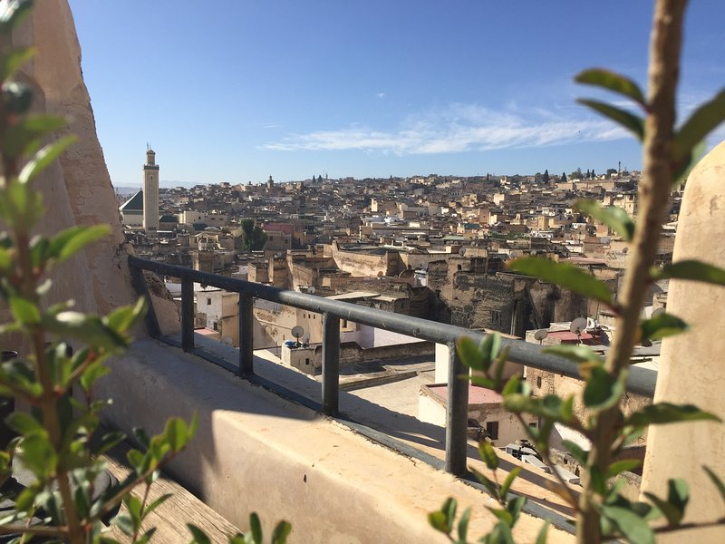 View of the medina from the roof terrace.