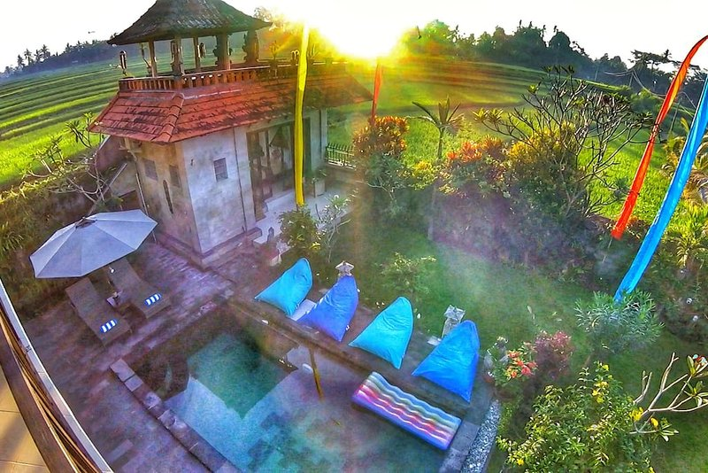 Swimming pool and garden during sunrise
