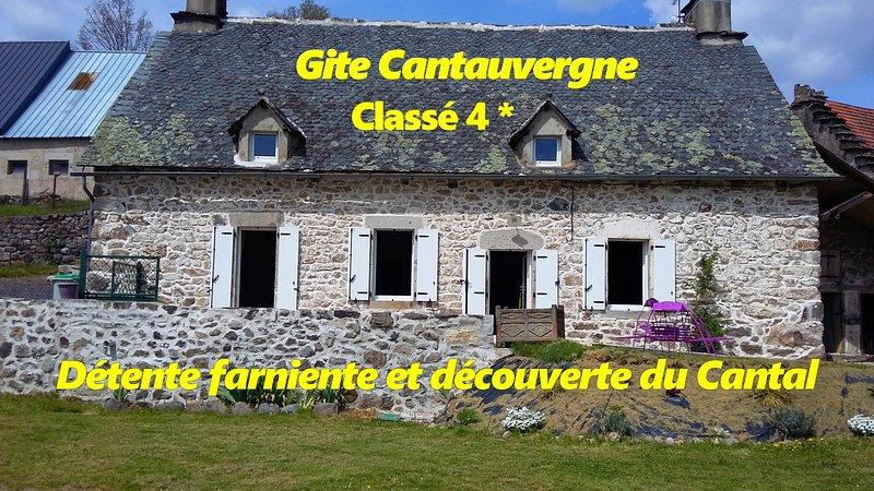 Gite Cantauvergne 4* avec BALNEO et SAUNA au coeur de l'Auvergne, holiday rental in Margerides