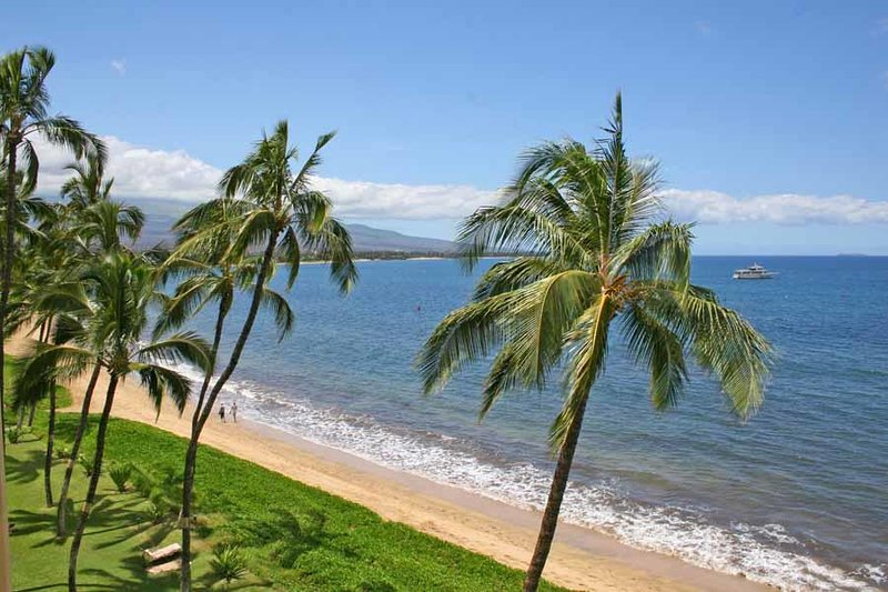 Gorgeous Oceanfront Condo! - Sugar Beach #518 – semesterbostad i Kihei
