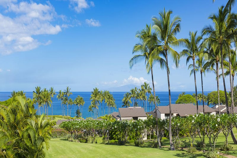 Luxury 2 Bedroom 2nd Floor Condo Wailea Elua #2204, holiday rental in Wailea
