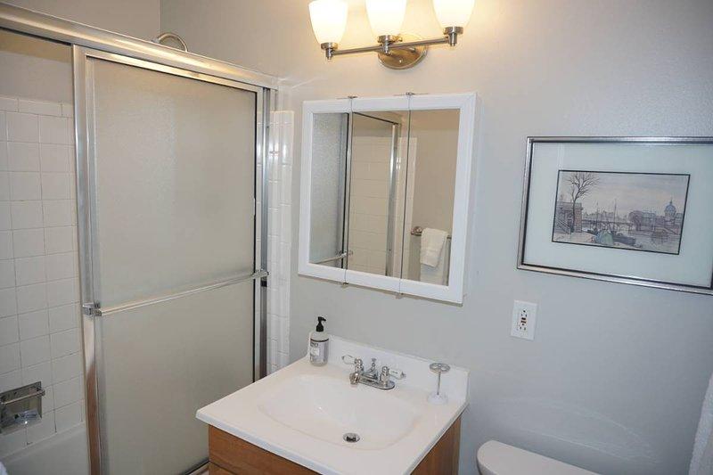 Updated Master Bathroom