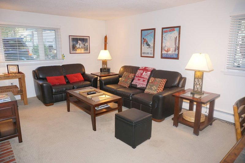 Great Value Condo in Aspen Core! - Walk to lifts, restaurants and shops (203032), vacation rental in Aspen