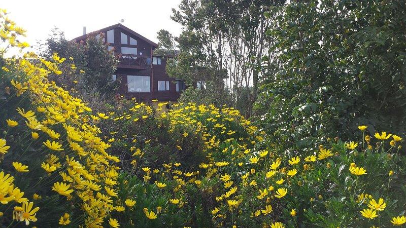 Casa arriendo diario Lago Llanquihue, holiday rental in Frutillar