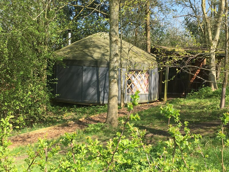 The yurt nestled in its very own coppice.