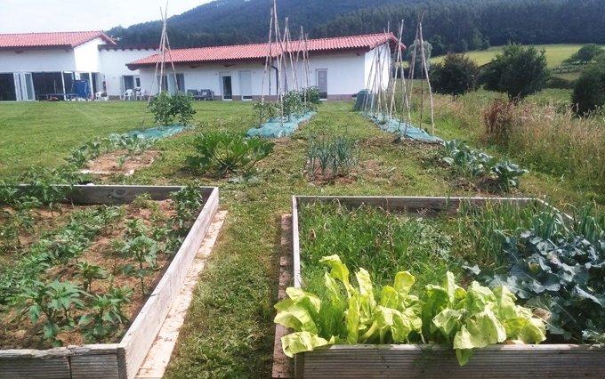 Proprio giardino ecologico.
