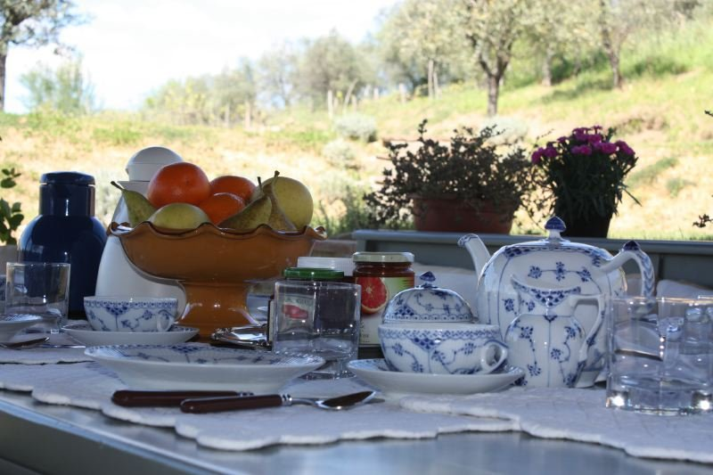 Lucca Villa Sleeps 12 with Pool Air Con and WiFi - 5218461, holiday rental in San Pietro in Campo