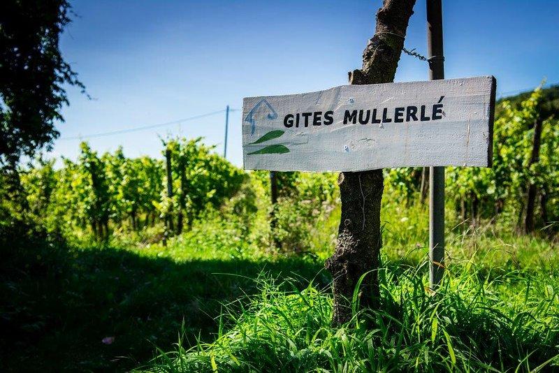 Le Mullerlé, holiday rental in Aubure