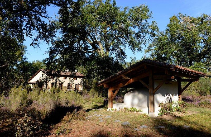 Maison de charme en pleine forêt des Landes, holiday rental in Callen