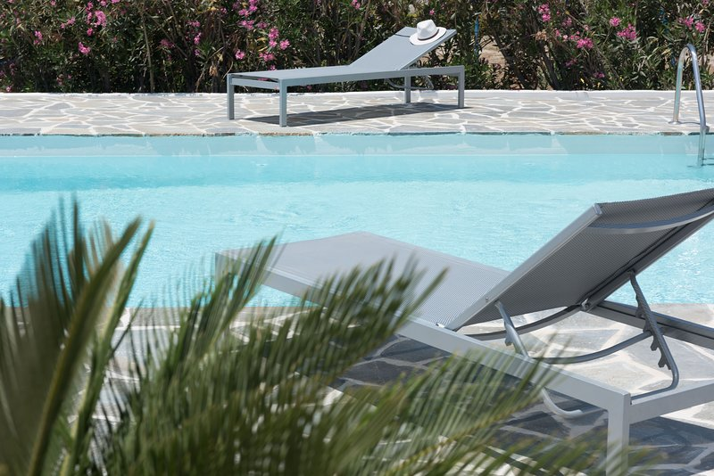 Depis Sea Side beachfront villa with pool and sea view/Naxos, vacation rental in Naxos