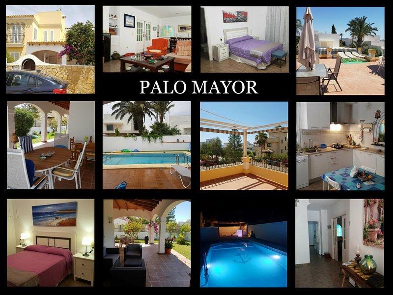 collage of the village palo mayor