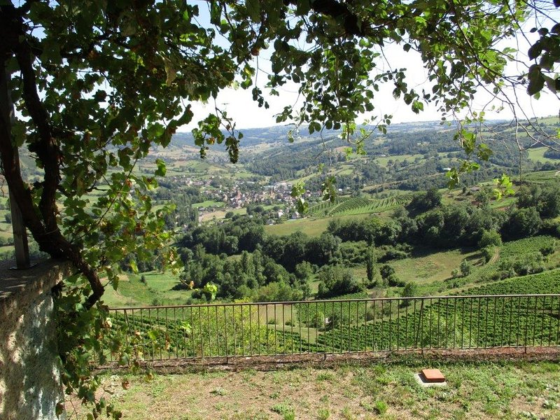 LE DOMAINE DES COSTES - charme et nature, au milieu des vignes, vacation rental in Onet-le-Chateau